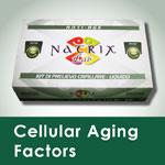 kit test cellular aging factors