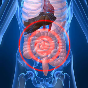 foto microbiota intestinale