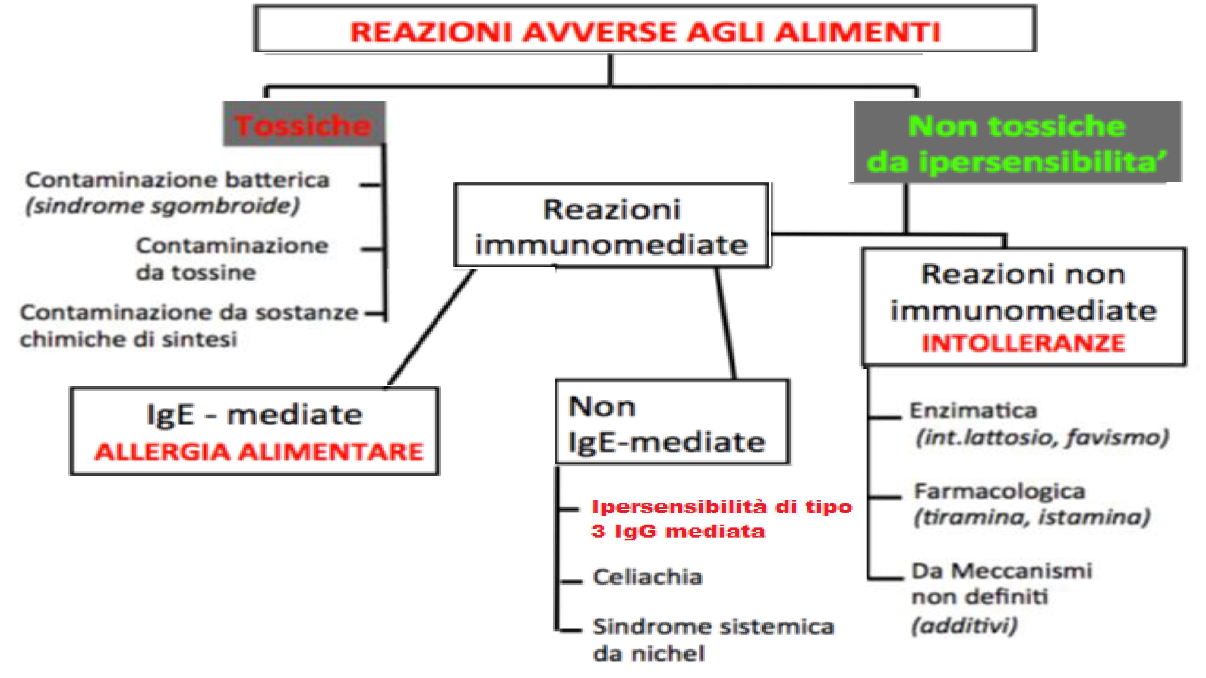 grafico classificazione intolleranze alimentari
